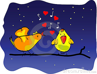 A love bird song