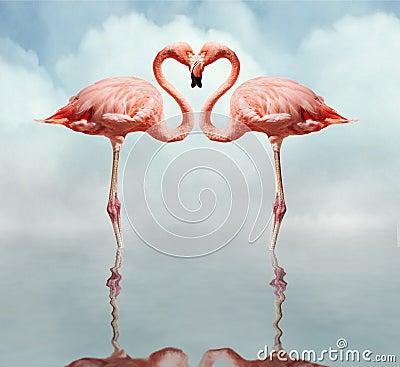 Free Love Birds Royalty Free Stock Photo - 1820945