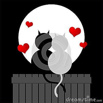 Free Love Cats Royalty Free Stock Photo - 1645885