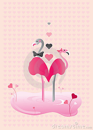 Love Flamingoes
