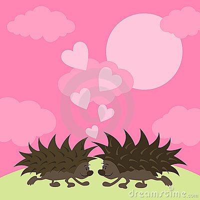 Love of hedgehogs