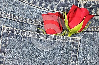 Love in my Pocket (Horizontal)
