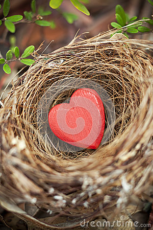Love Nest Valentine