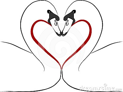 Love swans with red heart - freehand illustration