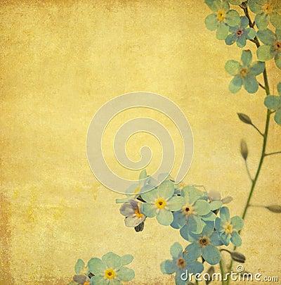 Free Lovely Background Image Stock Photos - 11163303