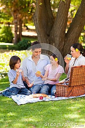 Lovely family picnicking in the park