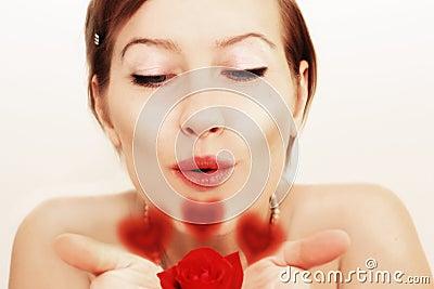 Lovely kiss for red rose