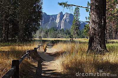 Lovely shady path in Yosemite Park