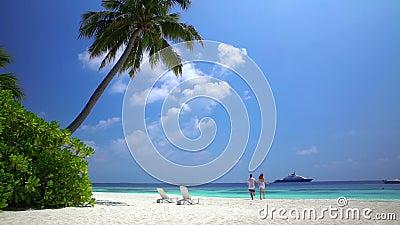 A loving couple enjoying vacation on the tropical beach. Slow motion. A loving couple enjoying vacation on a tropical beach. Slow motion stock video