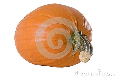 Low Angle Pumpkin