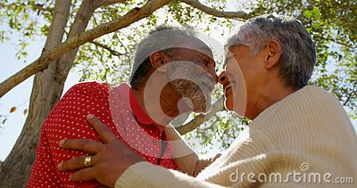 Low angle view of active African American senior couple looking face to face at each other 4k. Low angle view of active African American senior couple looking stock video
