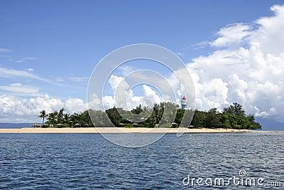 Low Isles, Queensland, Australia