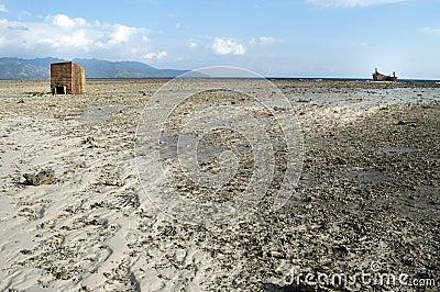 Low tide in shoreline