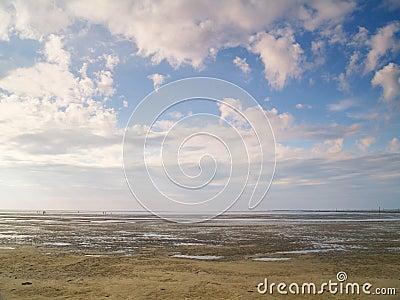 Low tide tideland