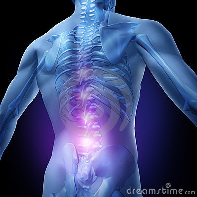Free Lower Back Pain Royalty Free Stock Photo - 23527285
