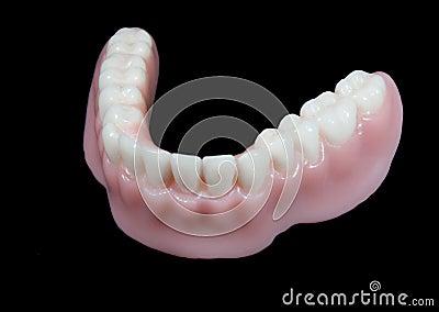 Lower denture teeth