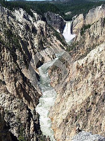 Lower fall in yellowstone