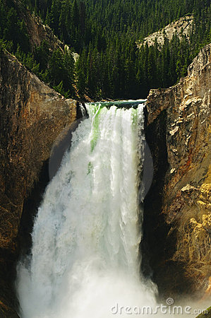 Lower Falls Yellowstone National Park
