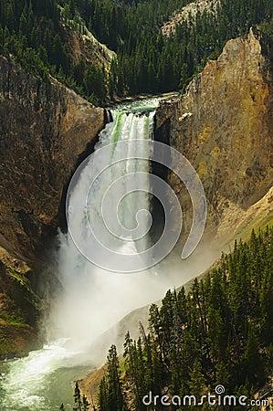 Free Lower Falls Yellowstone National Park Stock Photo - 10744770