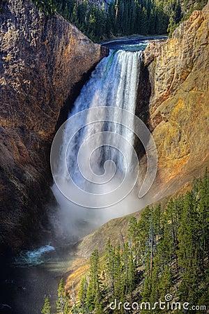 Free Lower Yellowstone Falls, Yellowstone NP Royalty Free Stock Images - 14885479