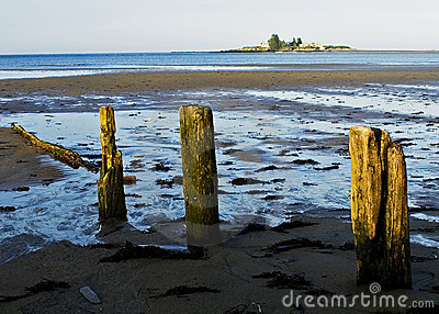 Lowtide in Maine