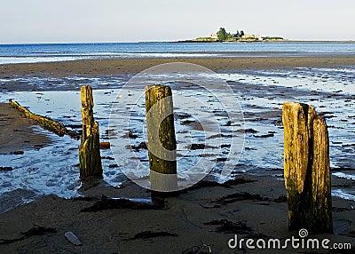 Lowtide in Maine