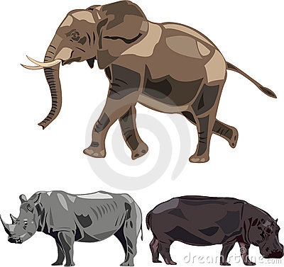 Éléphants, rhinocéros, hippopotame.