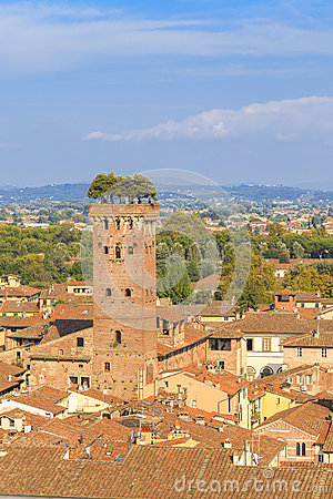 Free Lucca Tower Royalty Free Stock Photos - 44792898