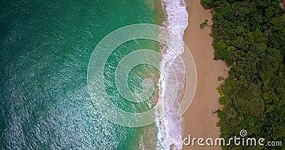Luchthommelmening van een Tropisch Caraïbisch strand in Bocas del Toro, Panama stock footage