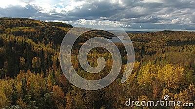 Luchtvaartoverzicht van bos en meer op het Keniaanse schiereiland in Alaska op herfstdag stock videobeelden