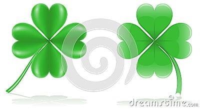 Lucky clover vector illustration