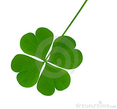 Free Lucky Shamrock Stock Photography - 11865892