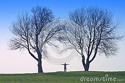 Ludzkich kształtów drzewa