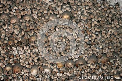 Ludzkie kości.