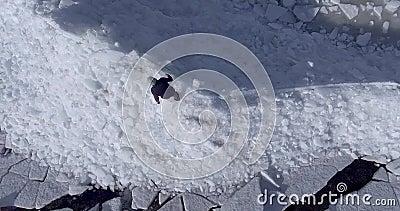 Luft-dron Ansicht des jungen aktiven glücklichen Mannes, der auf die Eisgletscher nahe Küstenlinie von Wintermeer geht Brummenans stock footage