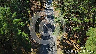 Luftaufspürung von Radfahrern auf Forststraßen Radfahren Triatlon-Fahrer auf der Straße von der Drone-Top-Ansicht stock video