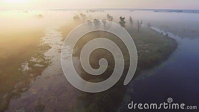 Luftvideo der gesamtlänge 4K des nebeligen Morgens Fliegen über den Desna-Fluss Sonnenaufgangzeit Kyiv-Region, Ukraine stock video