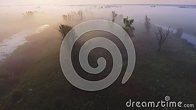Luftvideo der gesamtlänge 4K des nebeligen Morgens Fliegen über den Desna-Fluss Sonnenaufgangzeit Kyiv-Region, Ukraine stock video footage