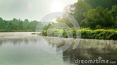 Lugna morgon på floden stock video