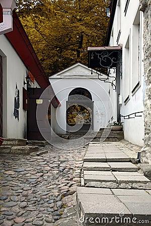 Luhike jalg, Tallinn