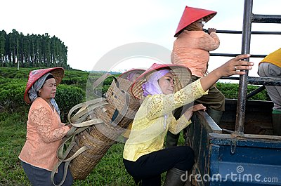 Lumajang Editorial Photo