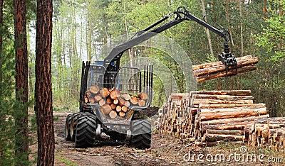 Lumber industry.
