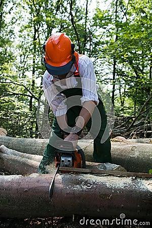 Free Lumberjack Royalty Free Stock Image - 15003616