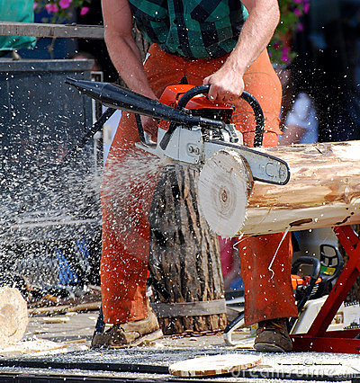 Free Lumberjack Chainsaw Stock Images - 7259024