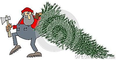 Lumberjack dragging a pine tree