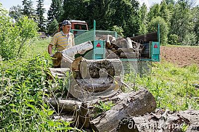 Lumberjack man load tree logs in tractor trailer