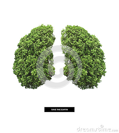 Free Lung Of Earth Stock Photo - 51960770