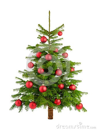 Free Lush Christmas Tree With Red Baubles Stock Photos - 34043393