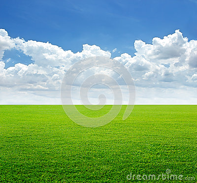 Free Lush Grass Field And Blue Sky With Cloud Background Royalty Free Stock Photo - 56494065