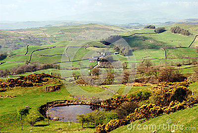 Lush Green Countryside, English Lake District Stock Images - Image: 24730464